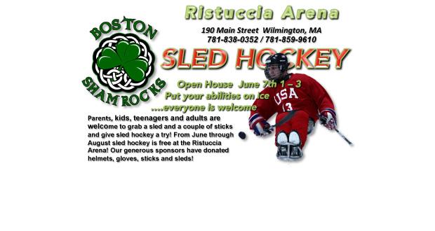 sled-hockey-shamrocks